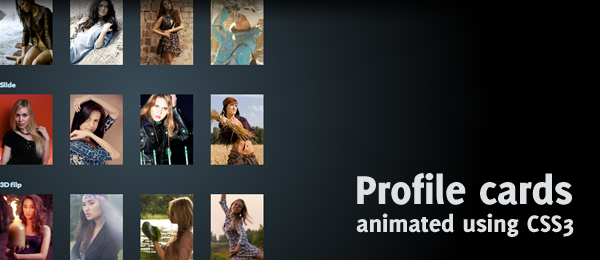 CSS animated profile cards